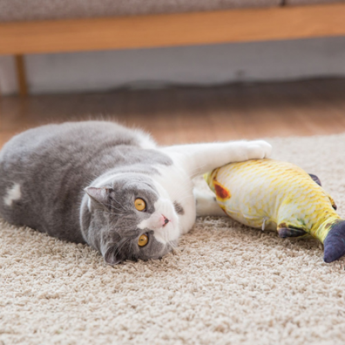Peixe Cat Toy Branzino Matatabi Cat Toys