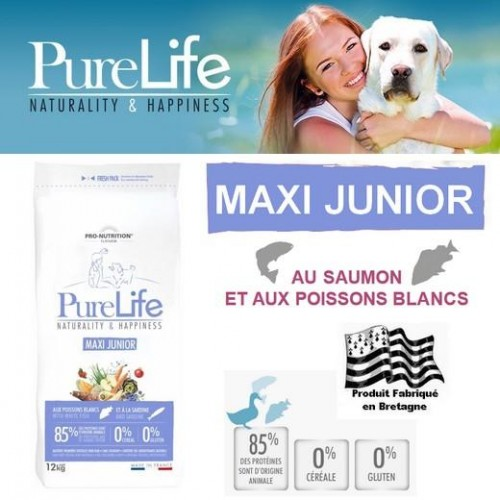 Flatazor PURE LIFE Dog MAXI JUNIOR