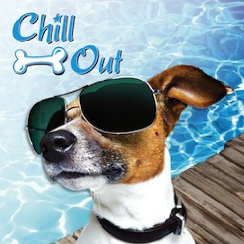 Chill Out Always Cool Dog Mat-Tapete Refrescante