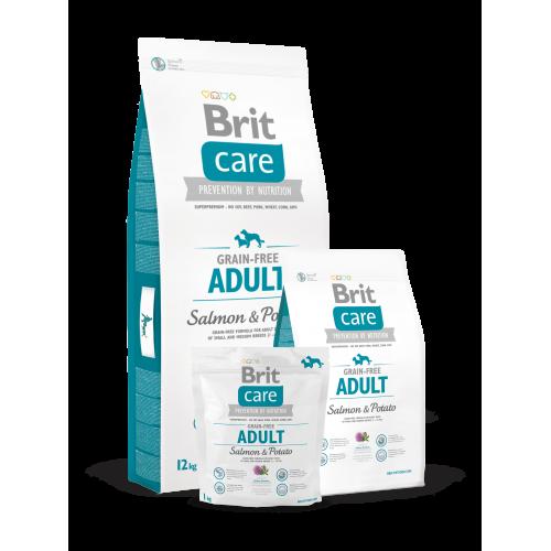 Brit Care Dog Grain free Adult Salmon e Potato