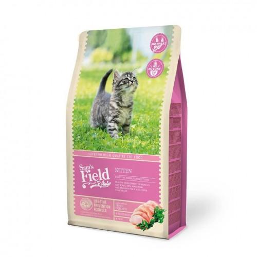 Sams Field Cat Kitten