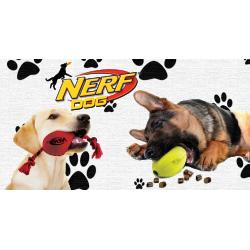 NERF DOG!